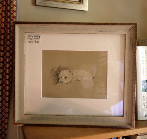 White Westie - lying down  1940's print by Lucy Dawson - Wes D1